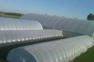 Exterior Greenhouse SAS FS